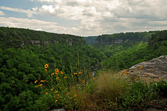 Little River Canyon (the waterfallhunter) Tags: canyon littlerivercanyon lookoutmountain dekalbcounty fortpaynealabama littlerivernationalpreserve wolfcreekoverlook