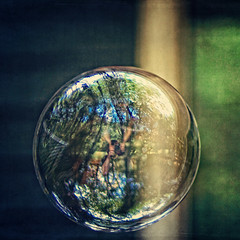 My life in a bubble (Irene2005) Tags: trees house me self 35mm reflections deck bubble scavengerhunt cliche hcs f20 week25 primelens nikond90 texturebyjessicadrossin clichesaturday bubblescategory
