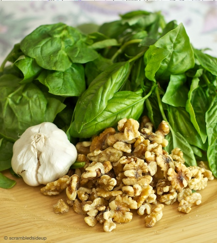 Walnut Pesto Ingredients