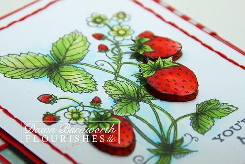Strawberries Close