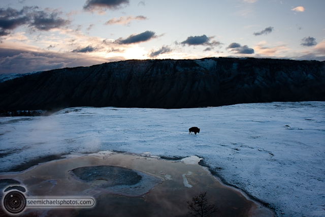 Yellowstone Day 2 52711 © Michael Klayman-004