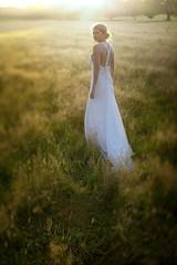 My Bride 6 (markpaulandrews) Tags: wedding sunset summer england beautiful field canon hair lens model dress shift louise lensflare flare romantic dreamy tilt 45mm tse tiltshift
