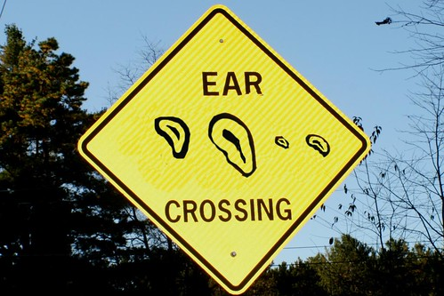 Ear Crossing