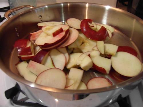 Apple Slices (Medium)