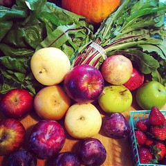 Farmers market 10/19/11 pt 2