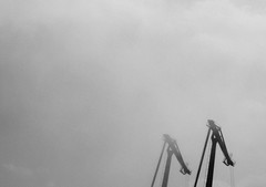 grullas.jpg (leiro_pics) Tags: bw puerto corua olympus bn galiza zuiko niebla gras manuallens om50mm18 enfoquemanual cielogrisytormentoso