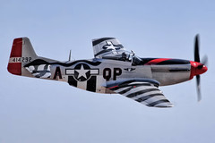 P-51 Mustang (mvonraesfeld) Tags: show california ca station airplane fighter aircraft aviation military air wwii central navy airshow valley mustang airforce naval base nas warbird p51 manowar lemoore northamerican 2011 img9586 comemmorative