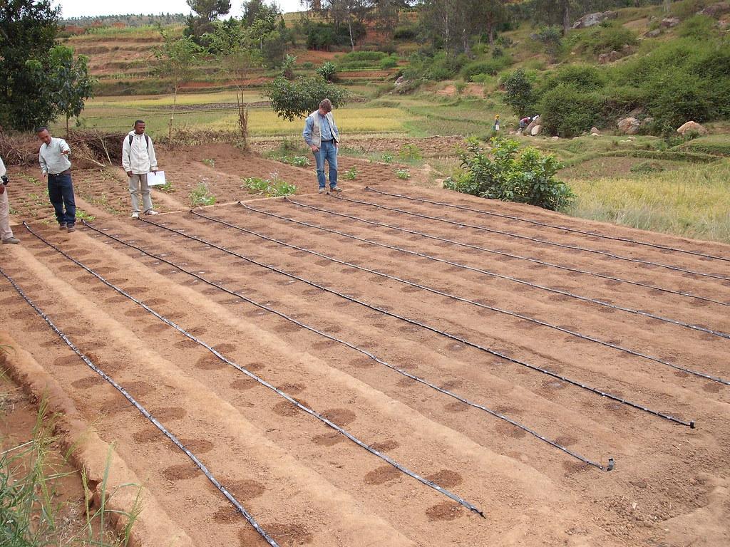 Preparation campagne Antsirabe