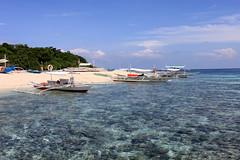 Snorkel Heaven (Island Chic) Tags: ocean blue sea summer bali sun beach water coral island boat sand snorkel shine philippines lagoon shallow reef kasag