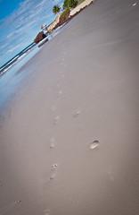 Salinas (Leonardo Magno) Tags: ocean brazil sky water gua brasil mar amazon nikon cu salinas pa par oceano amaznia d90 leonardomagno brasilemimagens