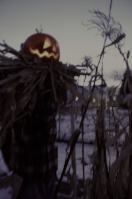 Guardian - from spooky Halloween photography of a pumpkin head scarecrow in the snow - by Robert Aaron Wiley for Bindlegrim