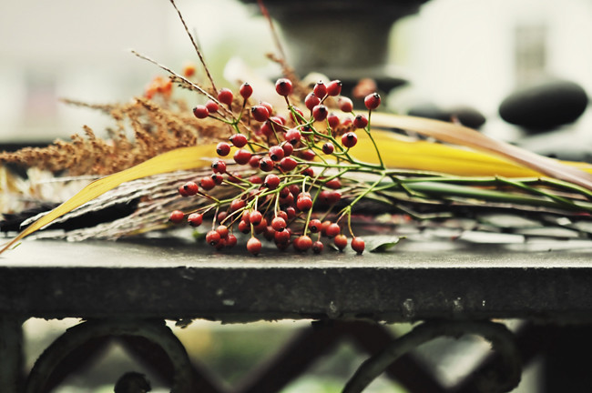 höstbord i trädgården