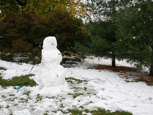Oct 29 2011 Snowman
