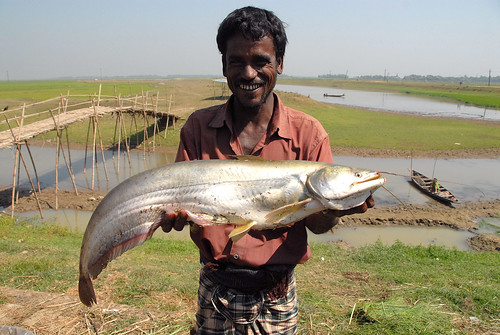 Fisherman with his catch, Bangladesh. Photo by WorldFish, 2007