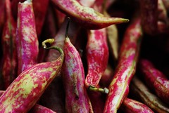 Shelly Beans (Renee Rendler-Kaplan) Tags: pink vegetables beans nikon gbrearview farmersmarket large fresh shelly whatever veggies evanston gapersblock wbez goodforyou mottled chicagoist evanstonfarmersmarket freshpicked evanstonillinois eatyourvegetables nikond80 thatsanorder ordont reneerendlerkaplan shellthem