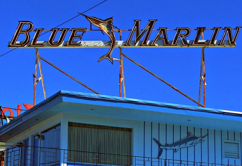 blue marlin motel wildwood nj
