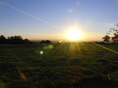 Rural Autumn Sunset (Alex Staniforth: Wildlife/Nature Photography) Tags: alex cheshire wildlife group staniforth