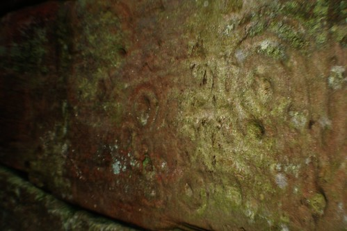 Prehistoric Rock Art at Ballochmyle