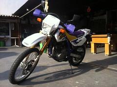 IMG_1553 (Adesivare) Tags: motoca