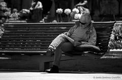 58/365  Organizando una historia en el banco del puerto (By  Jess Jimnez) Tags: people canon puerto photography banco paseo sentado jc 365 hombre jess periodico escritor robado 365days 450d canon450d 365das canoneos450 jessjimnezcarceln jessjcphotography