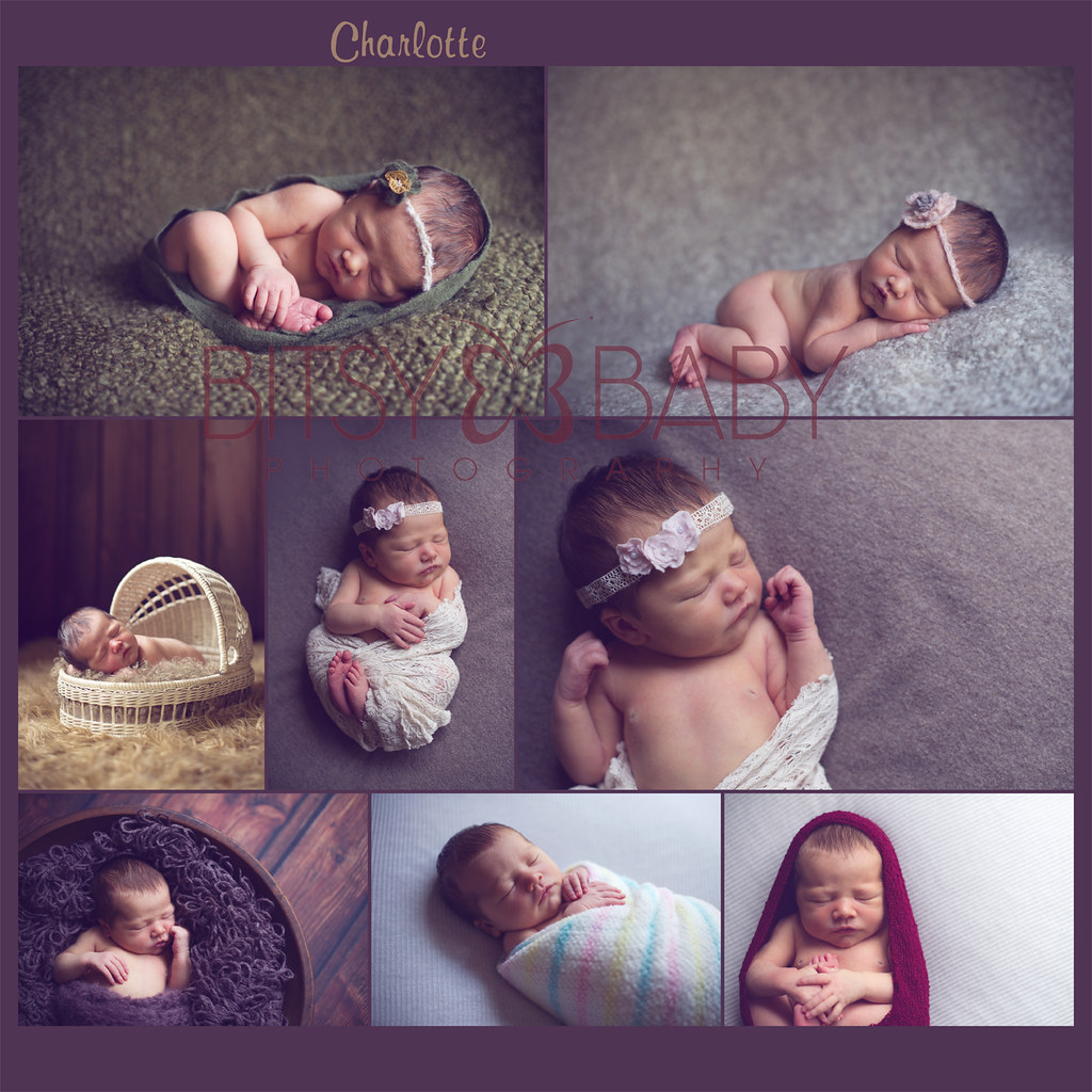 newborn photographer collage