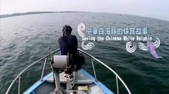 中華白海豚的保育故事預告片