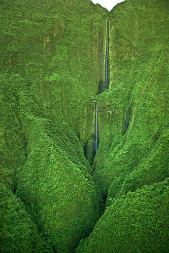 Maui Waterfalls - Honokohau Falls