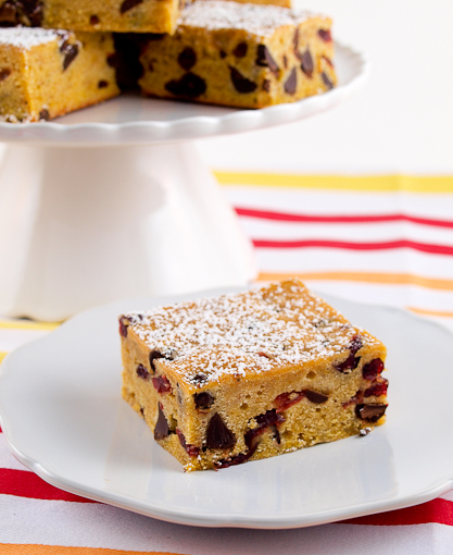 Pumpkin Banana Cranberry Chocolate Chip Blondies