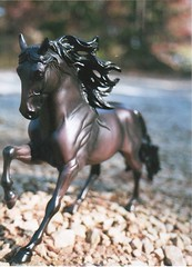 Water of Love (the fragile.) Tags: horse black model stallion andalusian breyer cantering