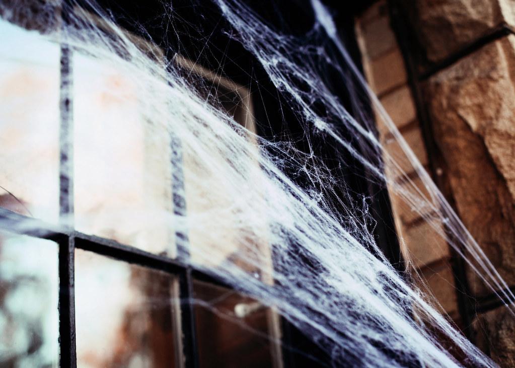 Halloween 13 Blog