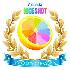 Nice-Shot-Badge