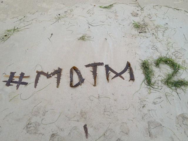 MOTM Hash tag in Seaweed