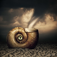 Shell with eye in sand and tornado. Surreal scenery (SergeyIT) Tags: sea storm black eye scale nature closeup dark landscape spiral scenery image hurricane shell surreal fantasy swirl helix tornado cyclone nautilus mollusk whirlwind