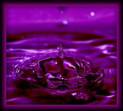 DSC_6467 (M.Demandt [Thanks for 240.000 views]) Tags: macro nikon waterdrop 11 sp di af 60mm makro tamron wassertropfen tropfen f20