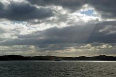 DSC01601 (Jessie K Smith) Tags: ocean trip newzealand vacation sky holiday nature beautiful landscape islands bay scenery tour dolphin dolphins nz maori bayofislands kiwi pahia