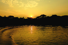 Sun SET (*HamimCHOWDHURY* [Only Posting photos ]) Tags: life pink portrait blackandwhite white black nature purple faces sony magenta surreal ash vaio rgb gettyimages backwater blackblue shallowwater greenbluewhite vaiolet incrediblebengal gettyimagesbangladeshq2 gettyimagesbangladeshq3 arialbill redgreengrayyellow 595036dhakabangladeshframebangladeshcanon60ddlsreoscolorfulblackandwhitered srinigor