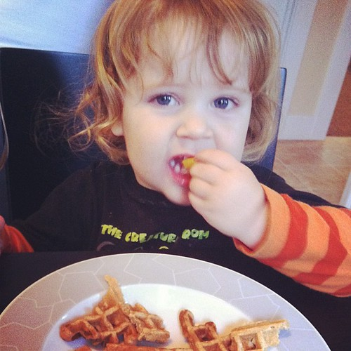 Waffle monster