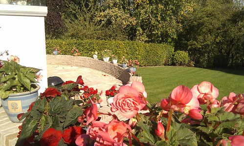 Prestbury Landscaping  Image 30