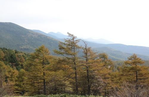 八ヶ岳@日向木場展望台 2011年10月11日1243 by Poran111