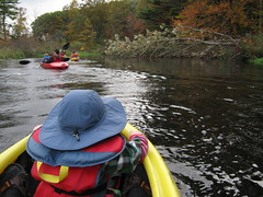 Assabet River kayaking