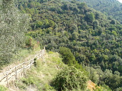"Urlaub 2011 Italien • <a style=""font-size:0.8em;"" href=""http://www.flickr.com/photos/7803982@N07/6271703351/"" target=""_blank"">View on Flickr</a>"