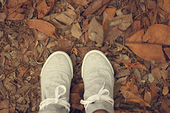 365 project (279/365) (Larissa Coutinho) Tags: shoes tenis leath