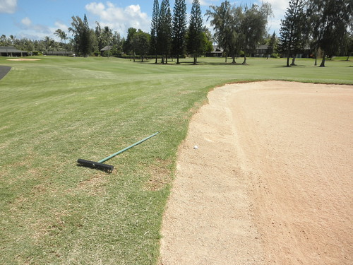 Turtle Bay Colf Course 215