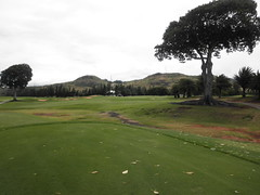 Turtle Bay Colf Course 226