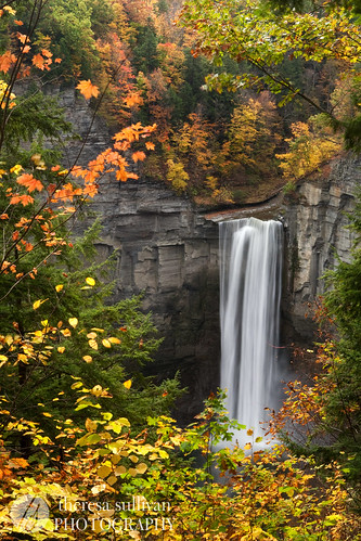 Taughannock in Autumn Colors