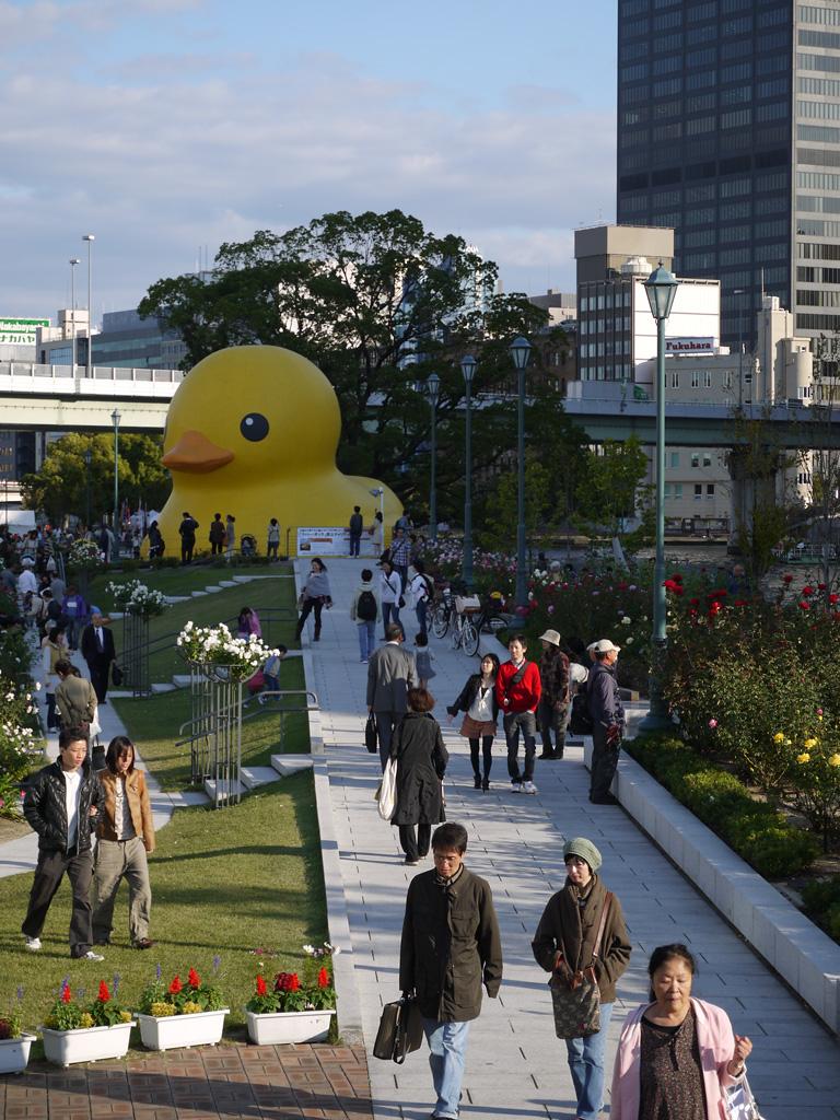 Rubber Duck in AQUA METROPOLIS OSAKA 2011 FESTIVAL