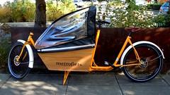 . (Splendid Cycles) Tags: satsuma metrofiets metrofeits