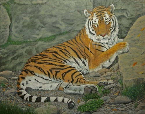Tiger At Rest by Sid's art
