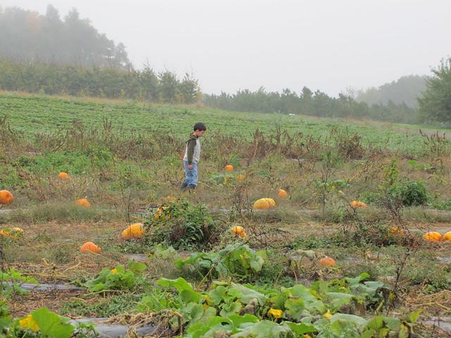 fall2011 154
