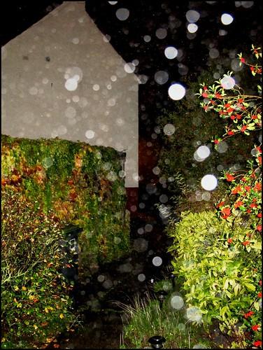 #10 ~ Rain